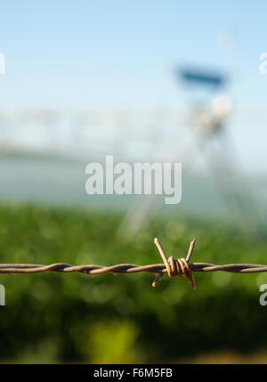 Close up of barbed wire fence - Stock Photo
