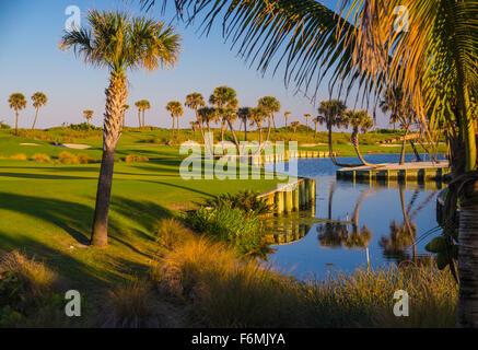 Palm Beach Par 3 golf course - Stock Photo