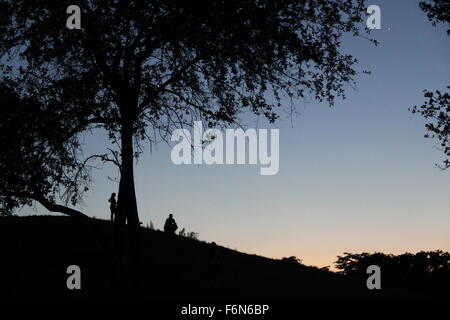 silhouettes under the twilight sky - Stock Photo