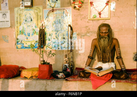 Sadhu reading holy book, varanasi, uttar pradesh, india, asia - Stock Photo