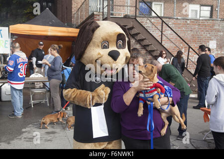 Dog meets dog at a Halloween Party sponsored by an animal rescue center in Windsor Terrace, Brooklyn. NY. - Stock Photo