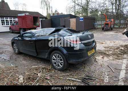 Storm Barney. Parked cars crushed by a falling tree in Oxford, UK - Stock Photo