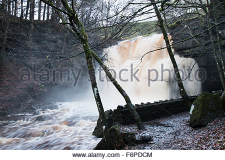 Summerhill Force Waterfall, Nr Bowlees, Co Durham, UK 18th November 2015. Heavy rain in the North Pennine Hills - Stock Photo