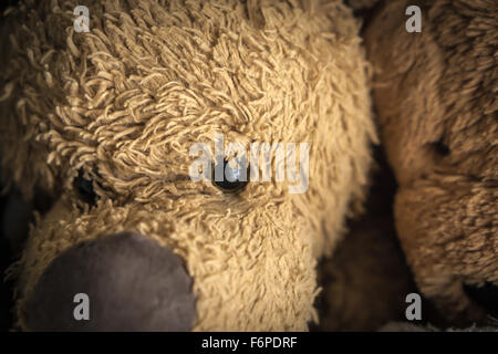 Close up of faces of two cuddly toys. - Stock Photo