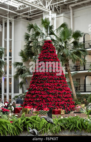 Usa Nashville Tennessee Christmas Decorations At Opryland Hotel ...