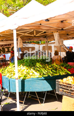 Fresh organic vegetables on sale at the weekly Farmers Market in Santa Barbara in California - Stock Photo
