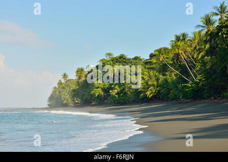 Beach in the Corcovado National Park of Costa Rica - Stock Photo