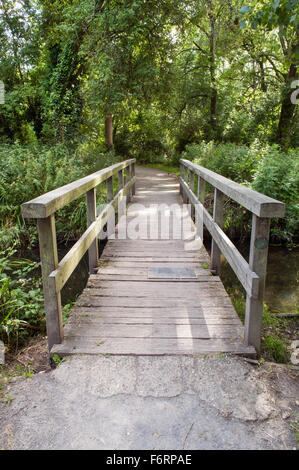 A wooden bridge in Morden hall park which is surrounded by tall green trees - Stock Photo