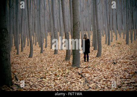 Caucasian woman standing in autumn forest - Stock Photo