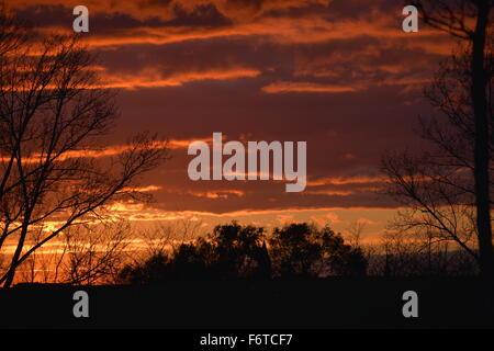 Beautiful orange sunset - Stock Photo