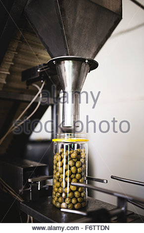 Olive oil filler machine in food processing plant - Stock Photo