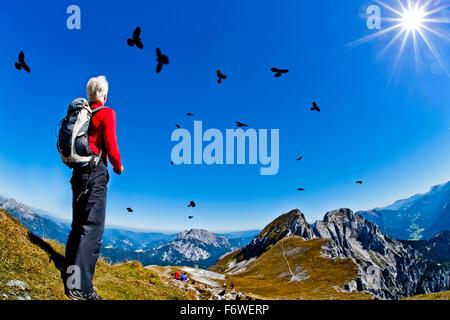 Hiker feeding Alpine choughs, Admonter Kalbling, Kaiserau, Styria, Austria - Stock Photo
