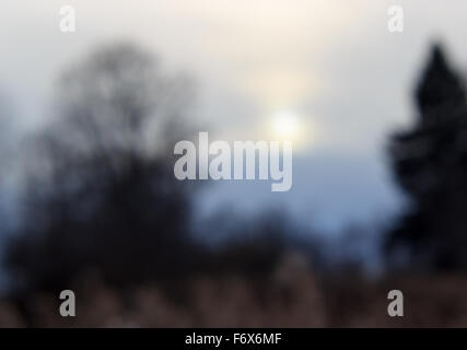 Defocused background with autumn sunset in cold tones. - Stock Photo