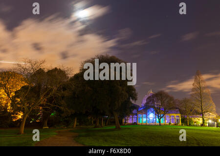 Brentford, London, UK. 20th Nov, 2015. The Enchanted Woodland returns to Syon Park and House in Brentford on November - Stock Photo