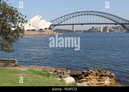 View towards Sydney Opera House and Sydney Harbour Bridge from Mrs Macquarie's Point. - Stock Photo