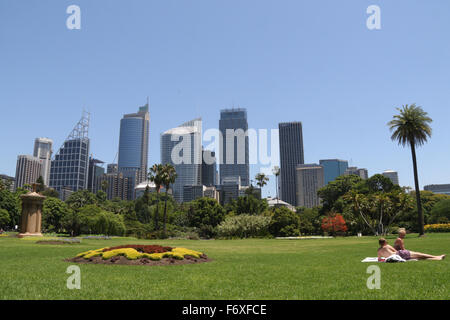 ... View Towards Sydney Central Business District Skyline From The Royal  Botanic Gardens On The Second Hottest