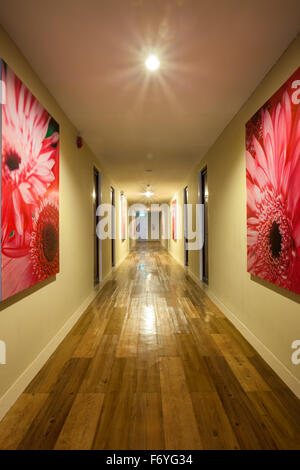 Outstanding Architecture Corridor Hallway Hall Lights Long Walls Carpet Dark Largest Home Design Picture Inspirations Pitcheantrous