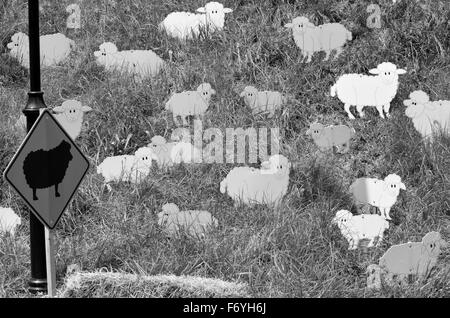 The Black sheep in the flock. Social Concept (BW) - Stock Photo