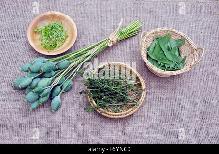Medical herbs in wicker baskets with a bundle of poppy heads on linen background - Stock Photo