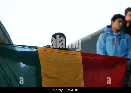 Udine, Italy. 22nd November, 2015. A man with flag of Mali during the Italian Serie A football match between Udinese - Stock Photo