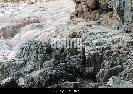 Pink Cadillac Mountain Granite flows around older country rock in the shatter zone near Hunters Beach in Acadia - Stock Photo