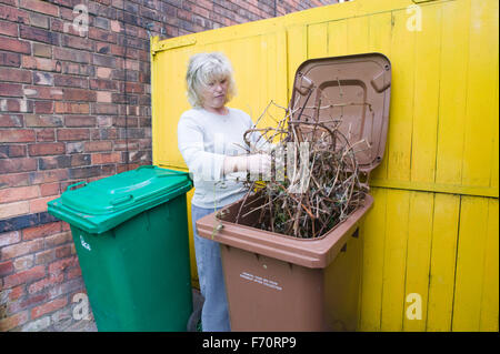 Woman putting garden waste in brown recycling bin, - Stock Photo