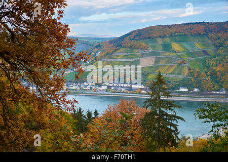 View  to Assmannshausen  near Rüdesheim,Upper Middle Rhine Valley,UNESCO world cultural heritage site,Germany - Stock Photo