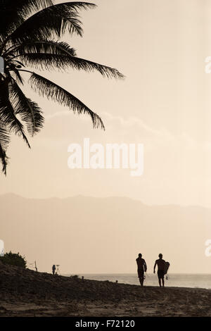 Silhouette of palm trees with two surfers walking along the beach after a surf. - Stock Photo