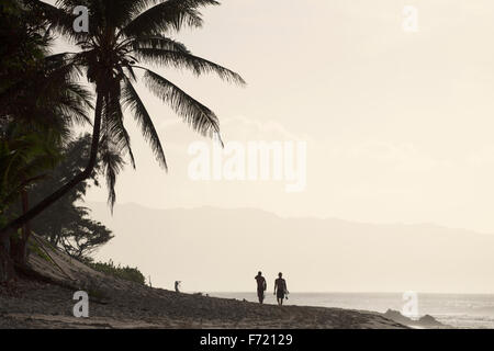 Silhouette of palm trees with two surfers walking along the beach after a surf - Stock Photo