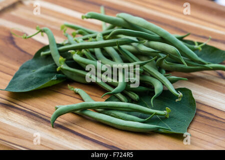 freshly picked organic green beans placed on a wooden table - Stock Photo