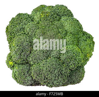Large inflorescences of fresh broccoli top view isolated on white background - Stock Photo