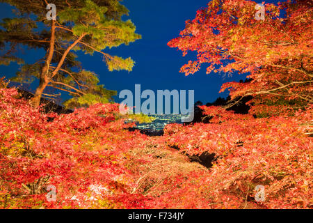 Autumn colors,Oyama-dera temple,Mt Oyama,Isehara city,Kanagawa prefecture,Japan - Stock Photo