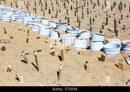 Nesting area for turtle eggs on the beach of Puerto Vallerta, Mexico. The pots indicate where the eggs are buried - Stock Photo