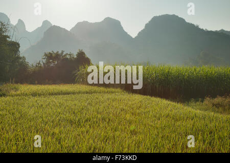 Rice Fields and Limestone Karst Formations Guilin Region Guangxi, China LA007942 - Stock Photo