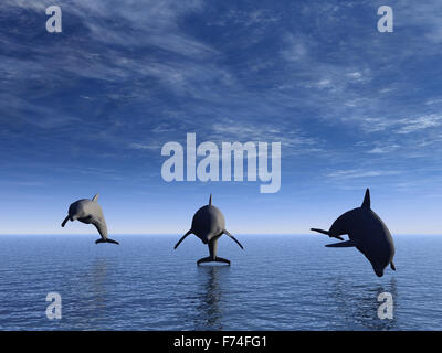 dolphin in front - Stock Photo