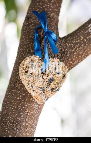 Birdseed shaped like a heart - Stock Photo