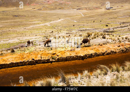 Water from Laguna Miluni which is a reservoir fed by glacial meltwater from the Andean peak of Huayna Potosi in - Stock Photo