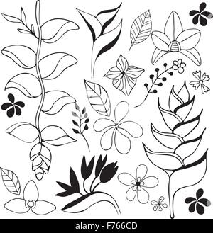 Tropical flower hand drawn sketch illustration black and white - Stock Photo