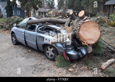 Crushed auto after storm. - Stock Photo