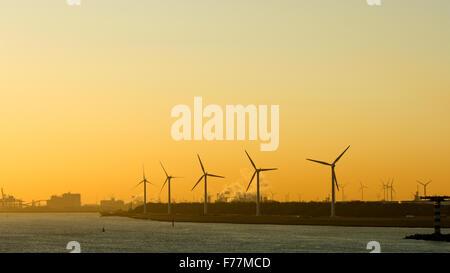 North Sea, Windmills, wind farm in Rotterdam harbour at sunrise. - Stock Photo