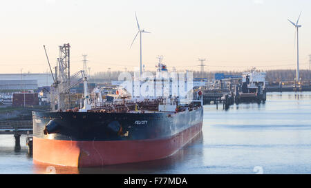 North Sea, Felicity crude oil tanker in Rotterdam harbour at sunrise with shipping, bulk containers tugs