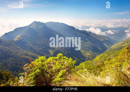 Sri Lanka - landscape of the Horton Plains National Park, view from 'World's End' - Stock Photo
