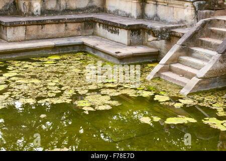 Sri Lanka - Polonnaruwa, Ancient City area, ruins of ancient royal residence, UNESCO World Heritage Site - Stock Photo