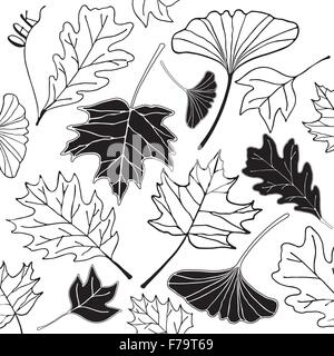 autumn leaf hand drawn doodle illustration black line on white background - Stock Photo