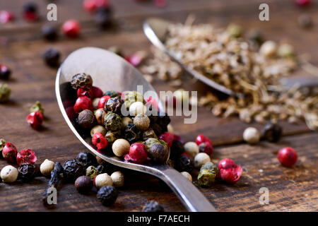 closeup of a spoon with a variety of different peppercorns, such as pink pepper, black pepper, red pepper or white - Stock Photo