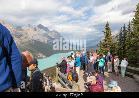 Tourists at Peyto Lake a glacier-fed lake located in Banff National Park in the Canadian Rockies Alberta Canada - Stock Photo