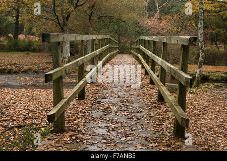 Footbridge over Ober Water Rhinefield Walk The New Forest Hampshire England UK - Stock Photo
