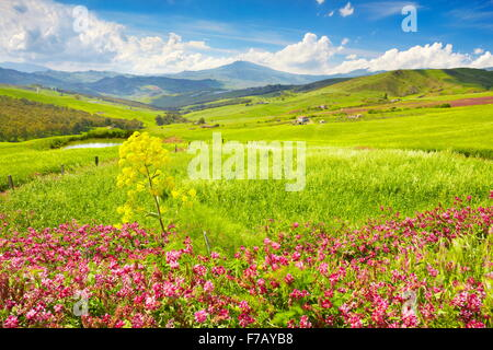 Spring landscape with flowers in Central Sicily, Sicily Island, Italy - Stock Photo