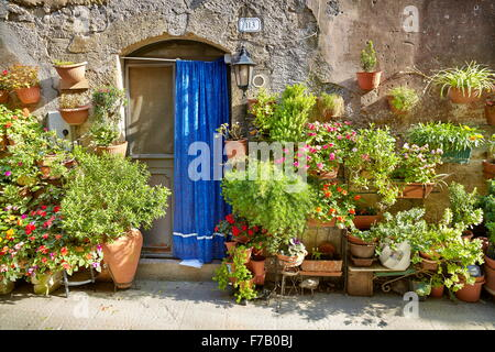 Entrance decorated with flowers, Pitigliano, Tuscany, Italy - Stock Photo