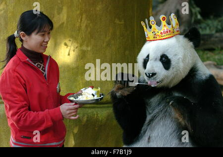 Fuzhou, China. 28th November, 2015. File photo taken on Dec. 18, 2005 shows giant panda Basi eating a cake at the - Stock Photo